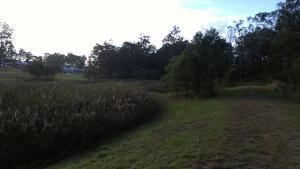 ashtonfield 1